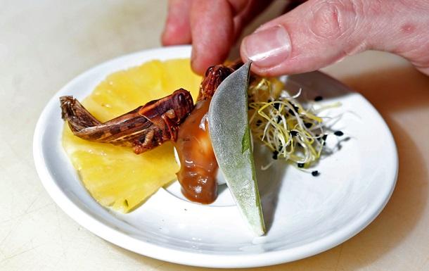 Кузнечики на перепелиных яйцах. В Париже появился первый ресторан, подающий блюда из насекомых