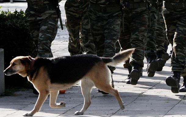 В Туркменистане солдаты погибли от отравленной колбасы для собак