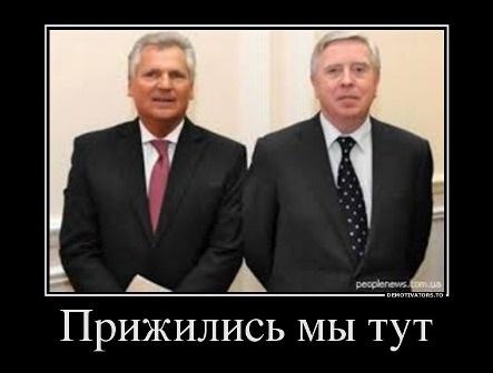 Юридический гамбит освобождения Тимошенко