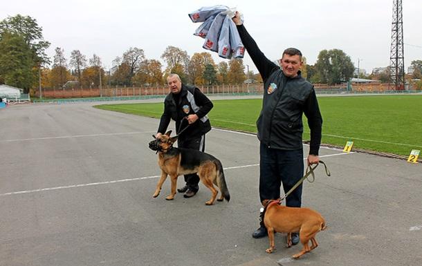 «Черниговская осень» — собакам радость!
