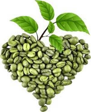 Зеленый кофе 800 для похудения - легкий сенсационный способ