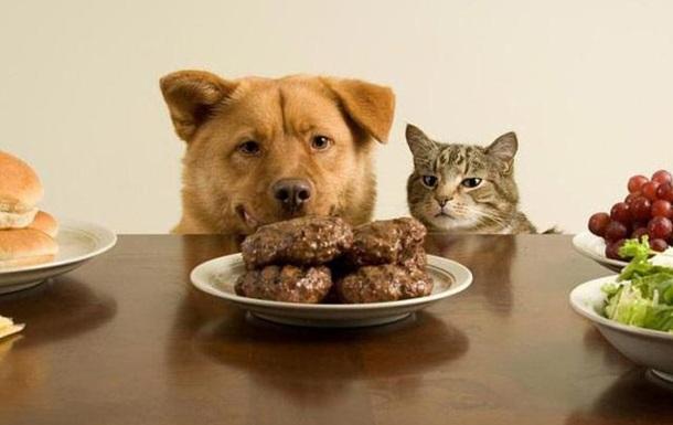 Не смотрите никому в тарелку