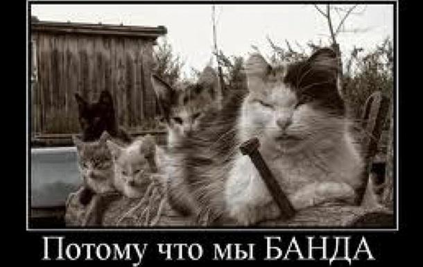 Харьковский «бандопаханат» Роя