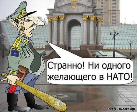 Свобода за НАТО. Но НАТО «оно не надо».