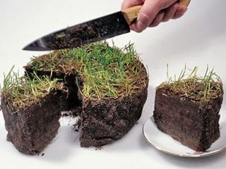 Земельная реформа: что дальше?