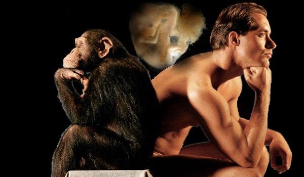 Теорія еволюції у школах. Нове покоління атеїстів.