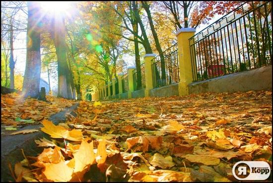 Осень в Днепропетровске. Фотозарисовка