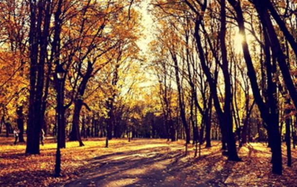Вот и наступила Золотая Осень. Фотосет осенних снимков