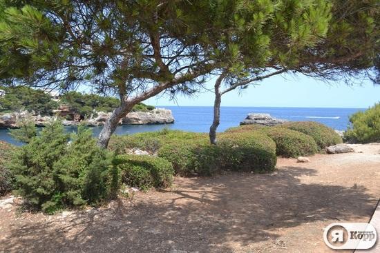 Отдых в Мальорке