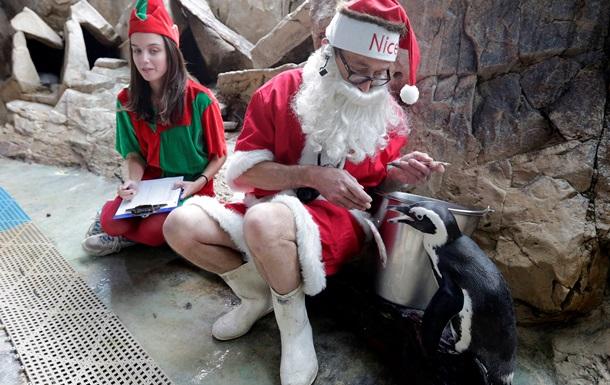 В США Санта-Клауса арестовали за приставания к эльфу