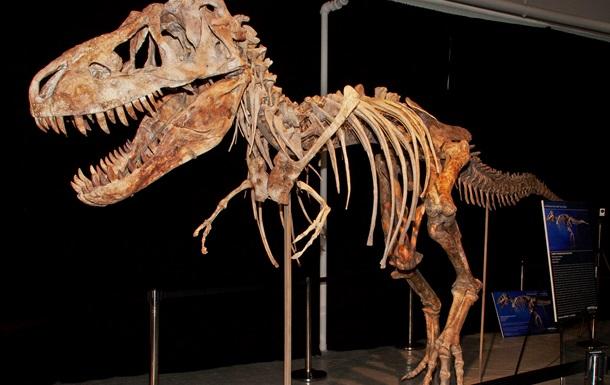 В Аргентине нашли древнейший туалет динозавров