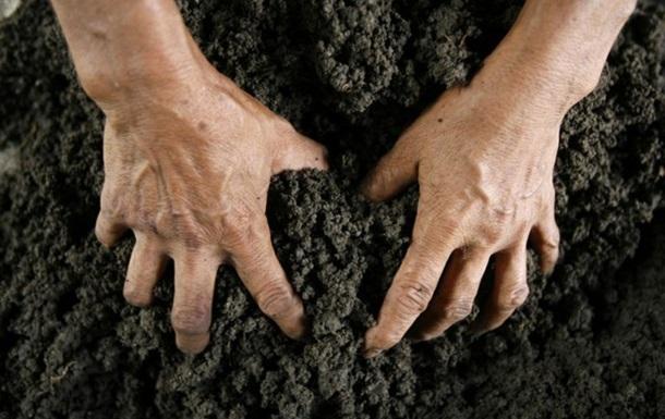 Чиновниця від культури захопила землю в Тростянці