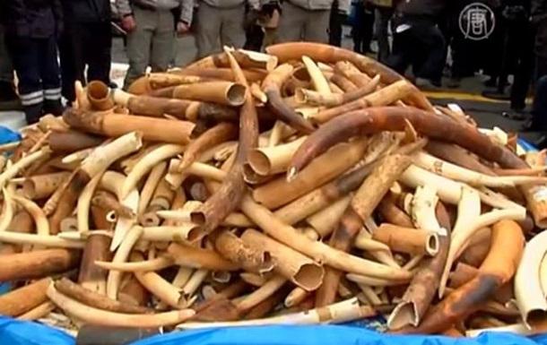 У подножья Эйфелевой башни публично уничтожили три тонны слоновой кости