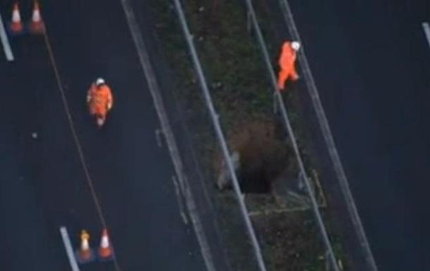 В Англии перекрыли автостраду из-за образовавшейся гигантской ямы