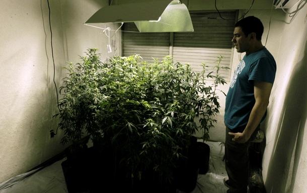 В Бразилии хотят легализовать марихуану