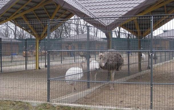 Киевский зоопарк позаботится о животных из Межигорья