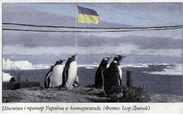 Про пік 100-ліття, український прапор, пінгвінів і лазню