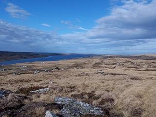 Фолклендські острови: що далі?