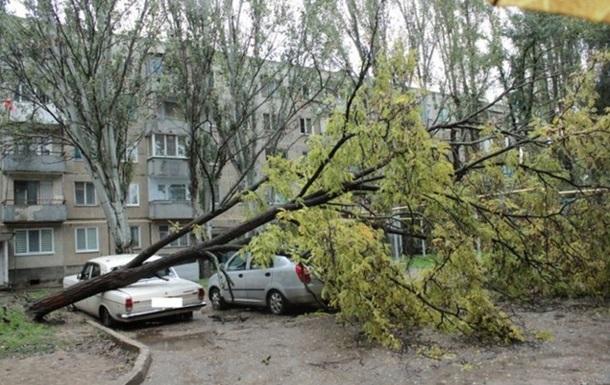 Непогода в Крыму: штормовой ветер валит деревья