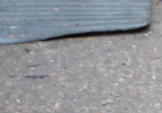 Подробности расстрела в Славянске