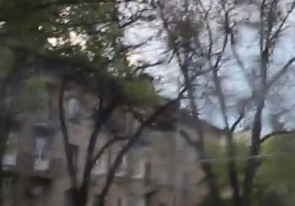 Мирные митингующие Донецка (фото)