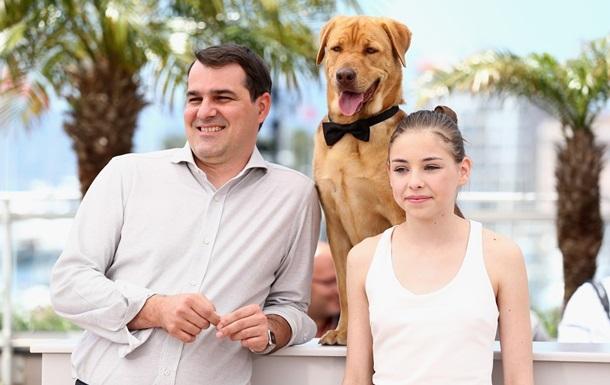 В Каннах высшую награду конкурса Особый взгляд получил венгерский фильм о бродячих псах