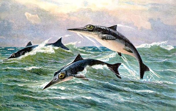 В Чили обнаружено крупное захоронение останков динозавров