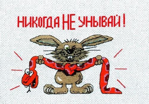 Кролик разбегается, прыгает и убивается апстену