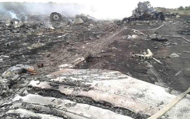 Опубликовано видео с места падения малазийского боинга
