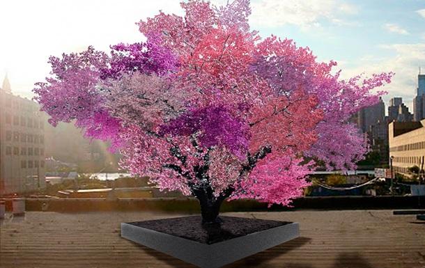 Американец создал дерево, дающее сорок видов фруктов