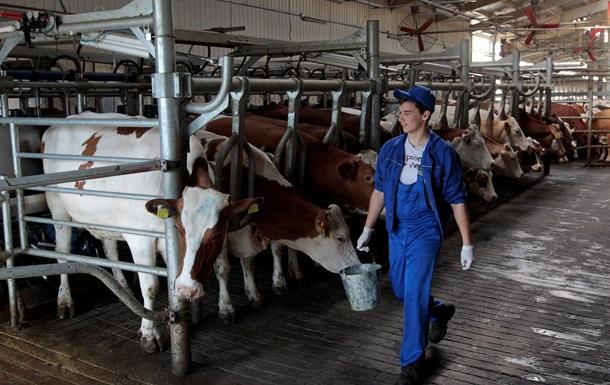 Россия ограничила ввоз скота из четырех стран ЕС
