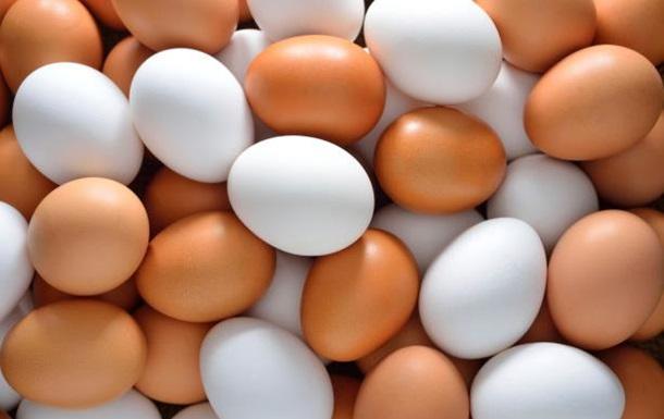 Роспотребнадзор советует россиянам не есть европейские куриные яйца