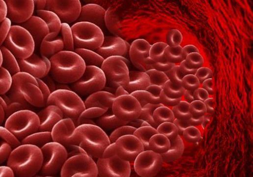 Нам нужна свежая кровь!