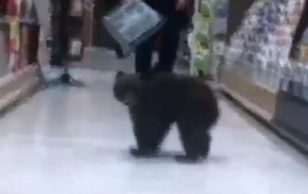 Медвежонок зашел в американский супермаркет
