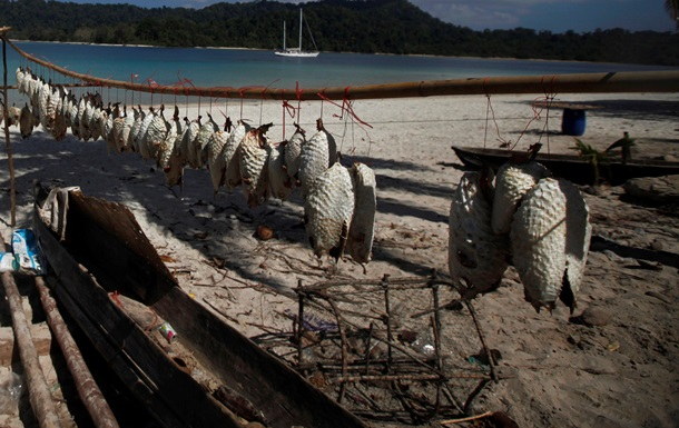 В Черном море поймали ядовитую рыбу фугу