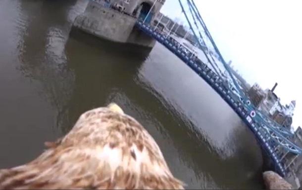 Как выглядит Лондон глазами орла - репортаж