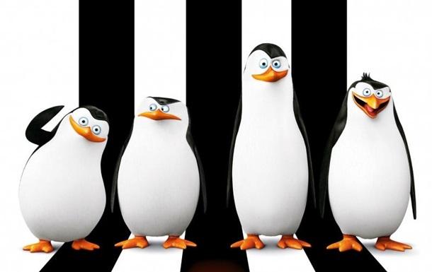 Пингвины Мадагаскара 2014 - видео