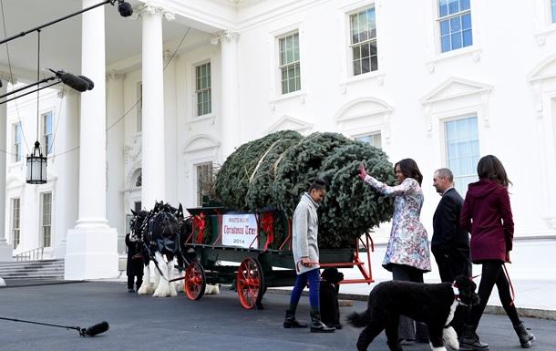 Рождественскую ель доставили в Белый дом