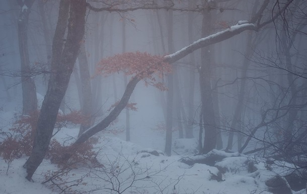 Украину накроют туман и мокрый снег