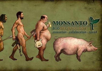 Хороший пример - американская компания Monsanto (с)