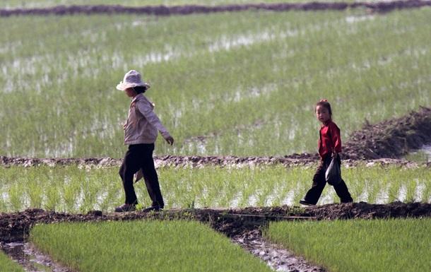 Северная Корея будет развивать Дальный Восток России