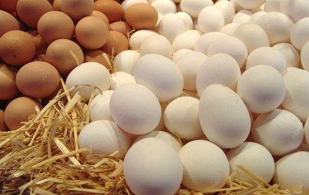 На Кубе госчиновников посадили за кражу яиц