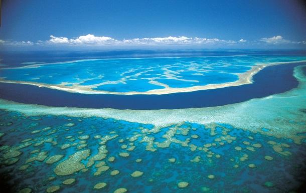 Австралия представила план спасения Барьерного рифа