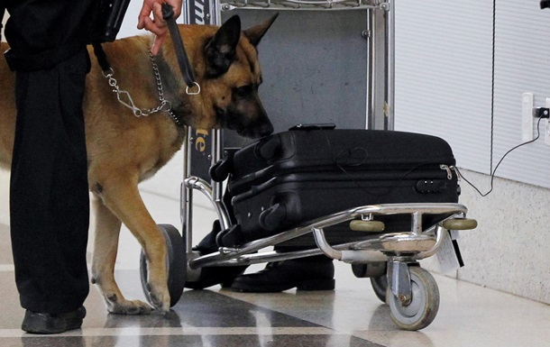 Грузинка пыталась попасть в Турцию в чемодане