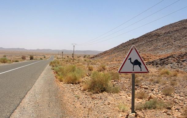 В Марокко более 30 спортсменов погибли в автокатастрофе
