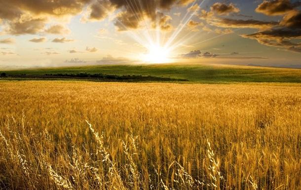 Может ли экономику Украины спасти сельское хозяйство