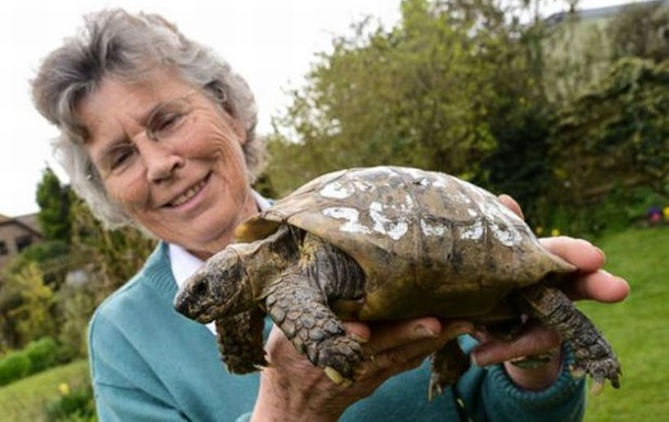 109-летняя черепаха вернулась к хозяйке после года в бегах