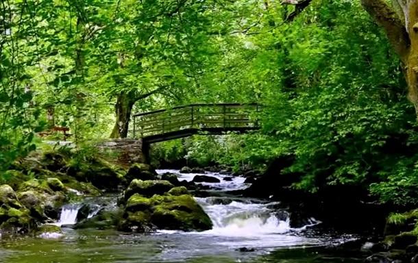 Видео ирландского водопада помогает бороться с бессонницей - The Telegraph