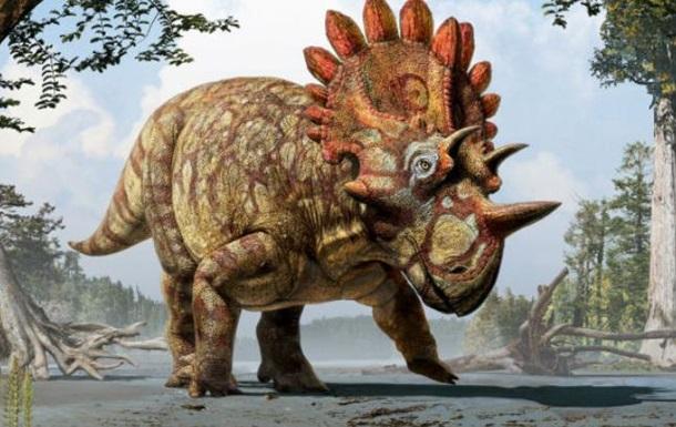 Ученые нашли родственника динозавра трицератопса
