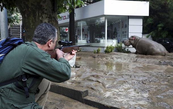 Итоги 14 июня: Наводнение в Тбилиси и победа сборной Украины